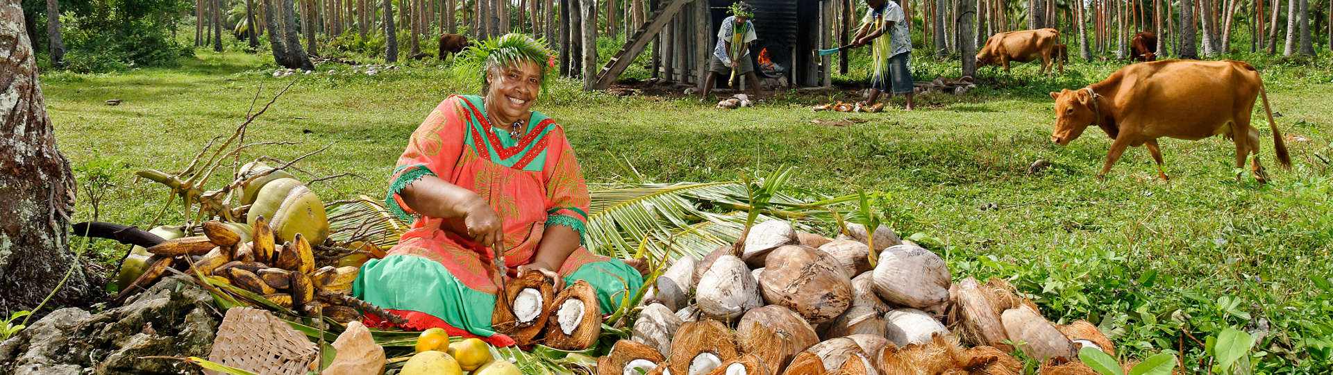 coconut grove saint joseph islands Fair New Caledonia