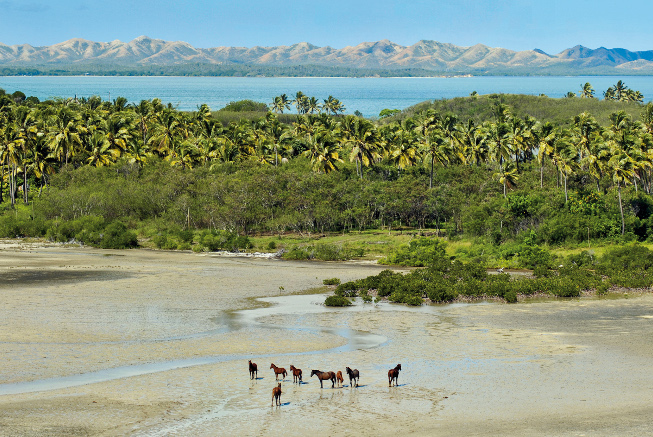 landscape in new caledonia