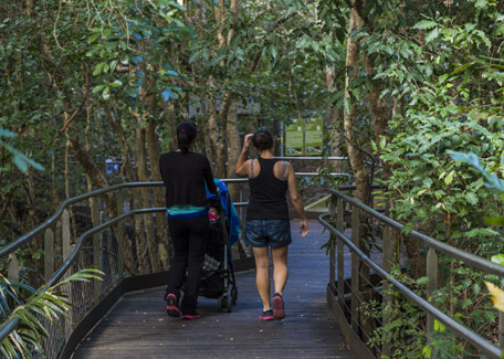 The Nouméa zoological and forest park