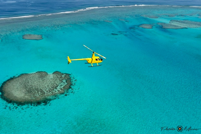 Helicopter, coral reef