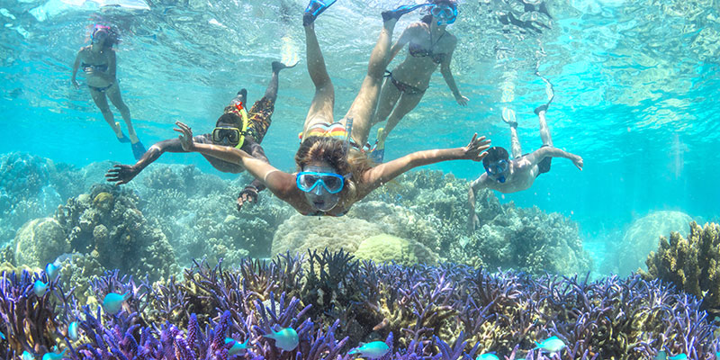 Snorkeling in New Caledonia